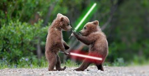 when-animals-attack-with-lightsabers