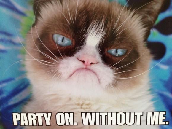 grumpy-cat-poster41-e1396570566775-580x435